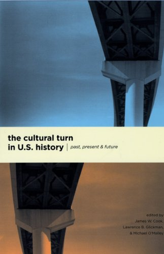 Cultural Turn in U. S. History Past, Present, and Future  2008 edition cover
