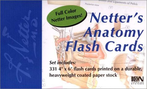 Netter's Anatomy Flash Cards   2002 edition cover