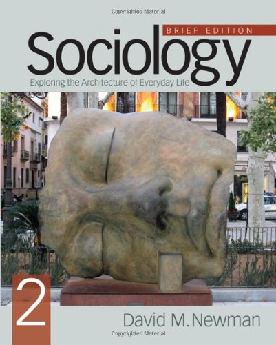 Sociology Exploring the Architecture of Everyday Life 2nd 2011 (Brief Edition) edition cover