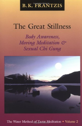 Great Stillness   2001 9781556434082 Front Cover