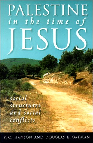 Palestine in the Time of Jesus Social Structures and Social Conflicts  1998 edition cover