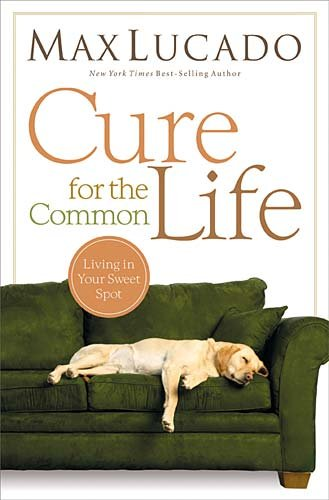 Cure for the Common Life   2011 edition cover