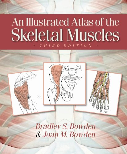 Illustrated Atlas of Skeletal Muscles   2010 edition cover