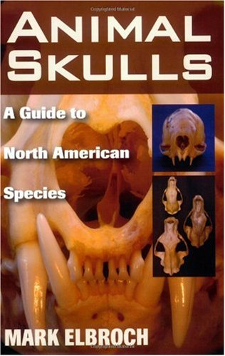 Animal Skulls A Guide to North American Species  2006 edition cover