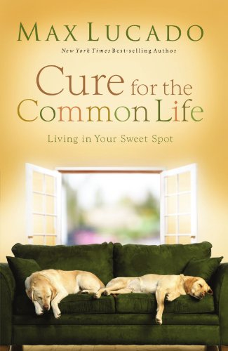 Cure for the Common Life Living in Your Sweet Spot  2008 edition cover
