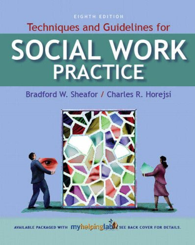 Techniques and Guidelines for Social Work Practice  8th 2008 9780205578092 Front Cover