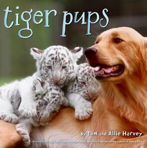 Tiger Pups   2009 9780061773099 Front Cover