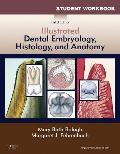 Student Workbook for Illustrated Dental Embryology, Histology and Anatomy  3rd 2011 edition cover