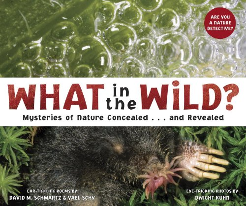 What in the Wild? Mysteries of Nature Concealed... And Revealed  2010 edition cover