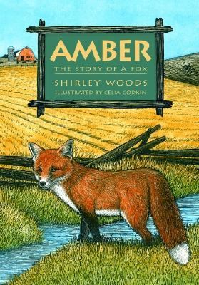 Amber The Story of a Fox  2003 9781550418101 Front Cover