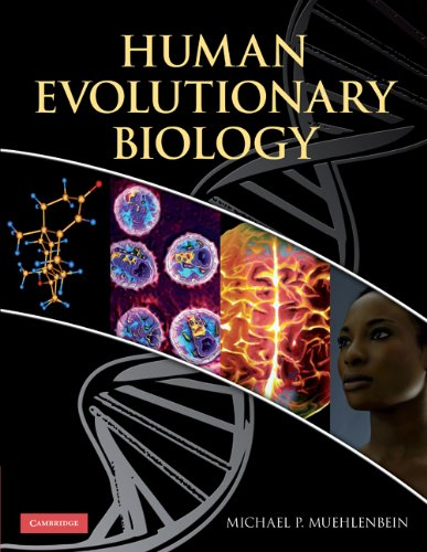 Human Evolutionary Biology   2010 edition cover