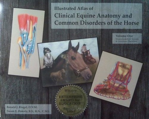Illustrated Atlas of Clinical Equine Anatomy and Common Disorders of the Horse N/A edition cover