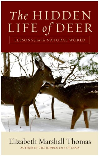 Hidden Life of Deer Lessons from the Natural World  2009 9780061792106 Front Cover