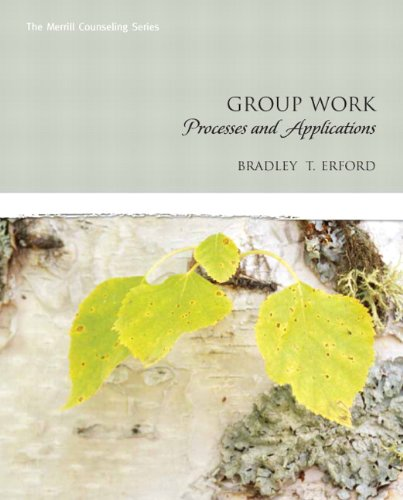 Group Work Processes and Applications  2011 edition cover