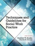Techniques and Guidelines for Social Work Practice:  10th 2014 edition cover
