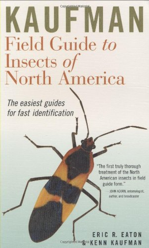 Kaufman Field Guide to Insects of North America   2007 edition cover