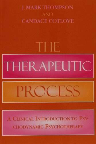 Therapeutic Process A Clinical Introduction to Psychodynamic Psychotherapy N/A edition cover