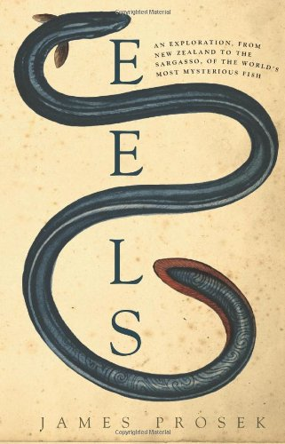 Eels An Exploration, from New Zealand to the Sargasso, of the World's Most Mysterious Fish  2010 9780060566111 Front Cover