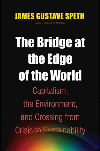 Bridge at the Edge of the World Capitalism, the Environment, and Crossing from Crisis to Sustainability  2008 edition cover