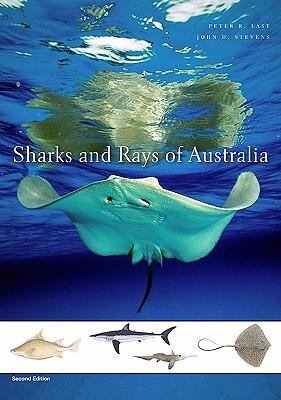 Sharks and Rays of Australia  2nd 2009 9780674034112 Front Cover