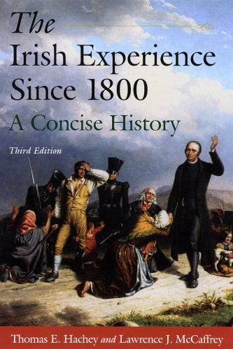 Irish Experience since 1800 A Concise History 3rd 2010 (Revised) 9780765625113 Front Cover