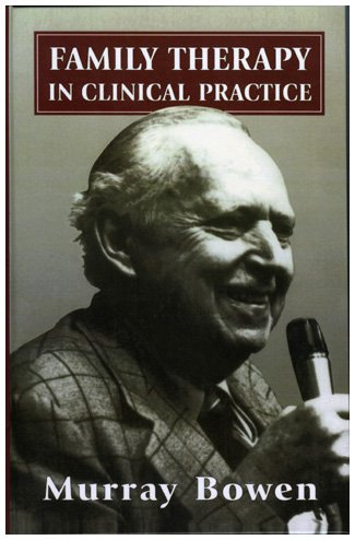 Family Therapy in Clinical Practice   2004 (Reprint) 9781568210117 Front Cover
