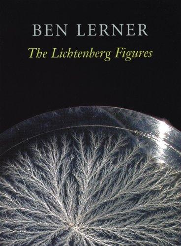 Lichtenberg Figures   2004 edition cover