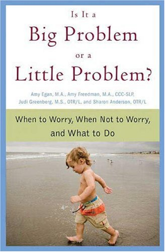 Is It a Big Problem or a Little Problem? When to Worry, When Not to Worry, and What to Do  2007 9780312354121 Front Cover