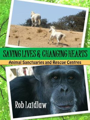 Saving Lives and Changing Hearts Animal Sanctuaries and Rescue Centers  2012 9781554552122 Front Cover