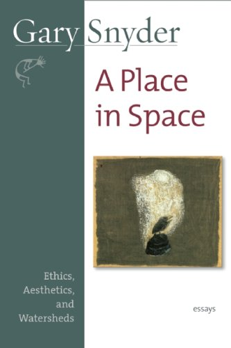 Place in Space Ethics, Aesthetics, and Watersheds  2008 (Revised) edition cover