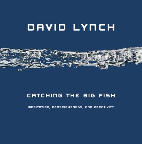 Catching the Big Fish Meditation, Consciousness, and Creativity N/A edition cover