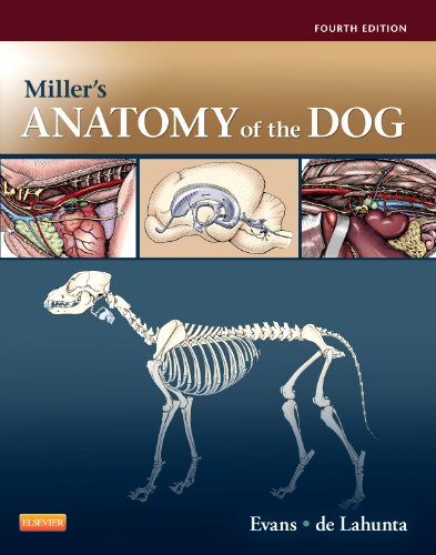 Miller's Anatomy of the Dog  4th 2012 edition cover