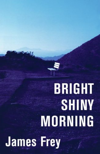 Bright Shiny Morning   2008 9780061573132 Front Cover