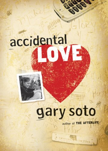 Accidental Love  N/A edition cover