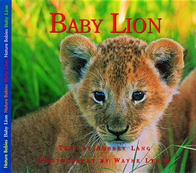 Baby Lion   2002 9781550417135 Front Cover