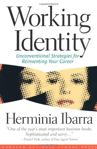 Working Identity Unconventional Strategies for Reinventing Your Career  2004 edition cover