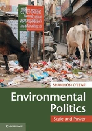 Environmental Politics Scale and Power  2010 edition cover