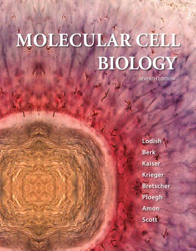 Molecular Cell Biology  7th 2012 9781429234139 Front Cover