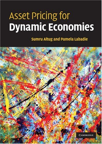 Asset Pricing for Dynamic Economies   2008 edition cover