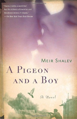 Pigeon and a Boy A Novel N/A edition cover