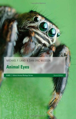 Animal Eyes  2nd 2012 edition cover