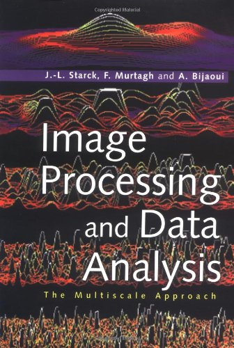 Image Processing and Data Analysis The Multiscale Approach  1998 9780521599146 Front Cover