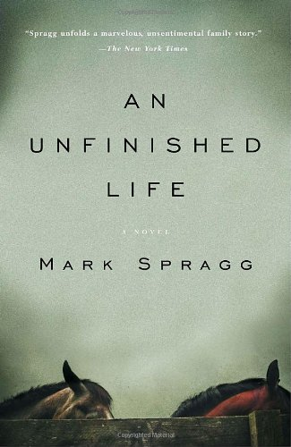 Unfinished Life  N/A edition cover