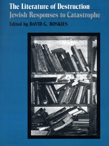 Literature of Destruction Jewish Responses to Catastrophe N/A edition cover
