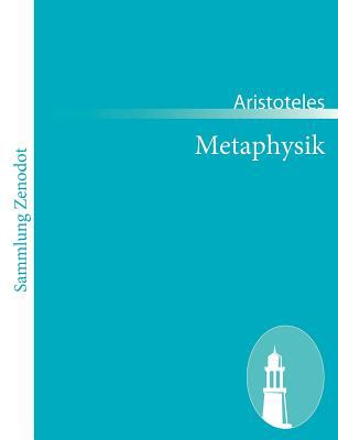 Metaphysik   2011 9783843064149 Front Cover