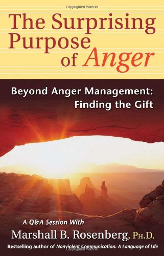 Surprising Purpose of Anger Beyond Anger Management - Finding the Gift N/A edition cover
