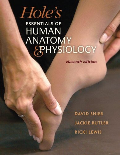 Hole's Essentials of Human Anatomy and Physiology  11th 2012 edition cover