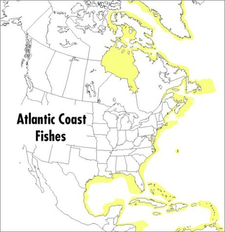 Field Guide to Atlantic Coast Fishes North America  1999 edition cover
