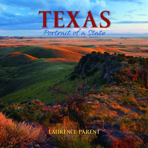 Texas Portrait of a State N/A 9780882409153 Front Cover