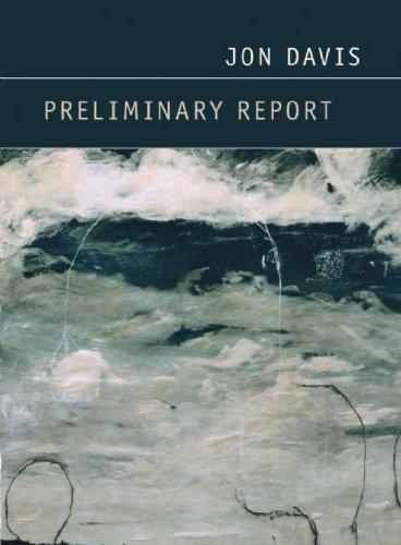 Preliminary Report   2010 edition cover